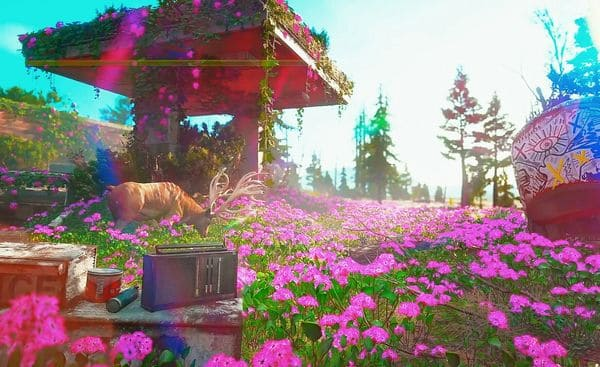ニュードーンの綺麗な景色の画像